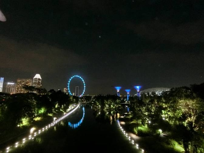 Gardens by the Bay & Singapore Flyer